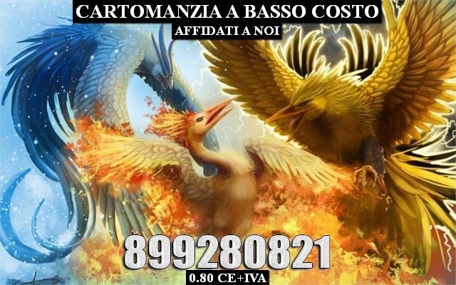 Arte-de-la-pintura-fantasy-bird-el-ave-fénix-fuego-nieve-fría-relámpago-una-batalla-en.jpg_640x640